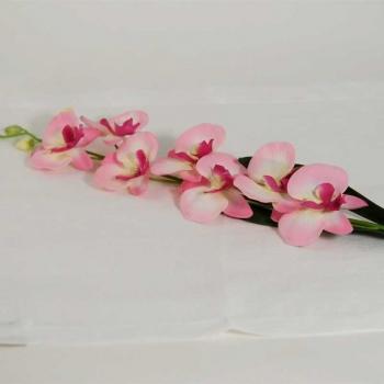 Silk Pink Orchid Flower
